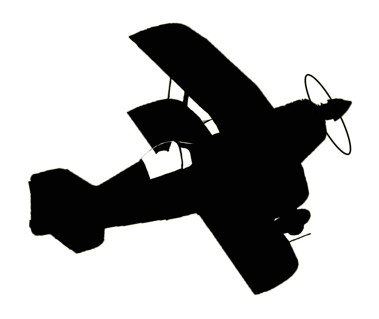 cdw-biplane-logo-black